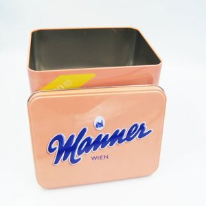 rectangle cookies tin boxes3 300x300 - Custom Rectangular Metal Cookie Tin With Lids For Biscuits
