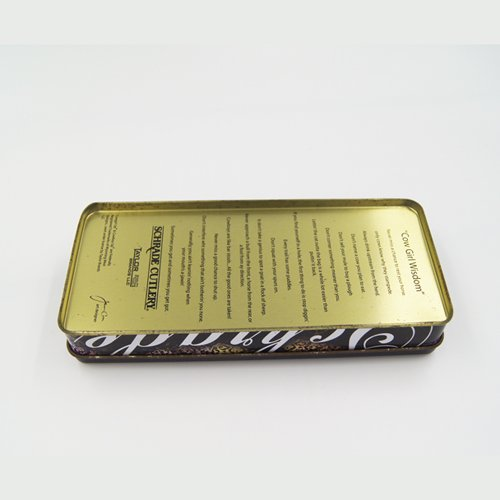DSC05600 - Rectangular Small Tin Containers Embossed Lid for Packaging
